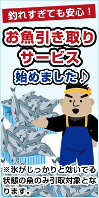 hikitori200.jpg