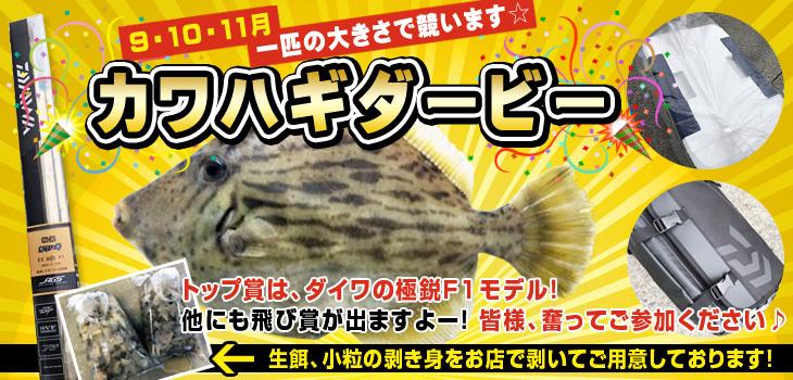 kawahagi_db2.jpg