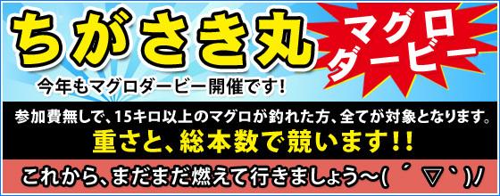 maguro2016.jpg